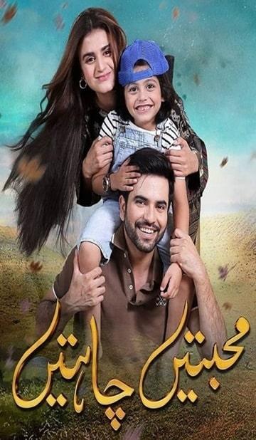 Mohabbatain Chahatain Cover