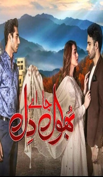 Bhool Jaa Ay Dil Cover