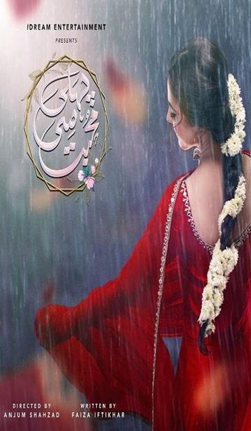 Pehli Si Mohabbat Cover